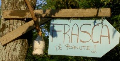 frasca4