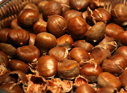 chestnuts-for-dogs