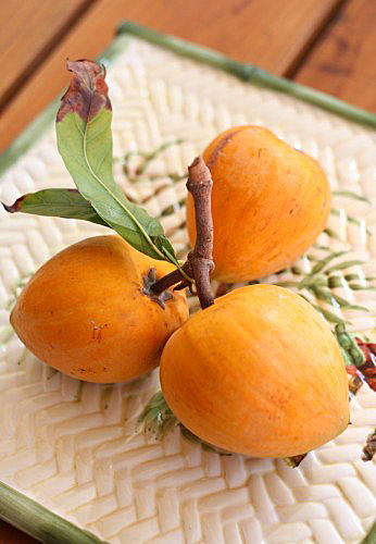 chicken eggfruit1