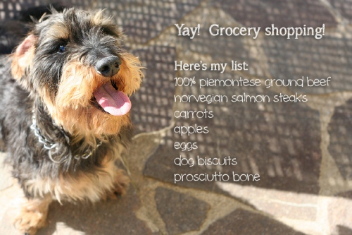 Doggie-shopping-list