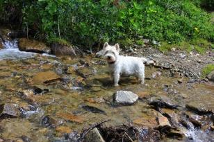 Maddie on Austrian forts trail