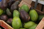 Kauai Community market avocado